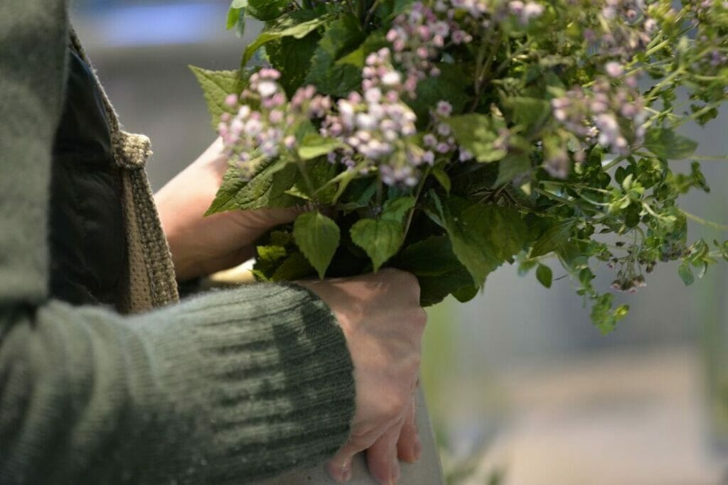 Close up photo showing hands of florist JL-working-in-shop