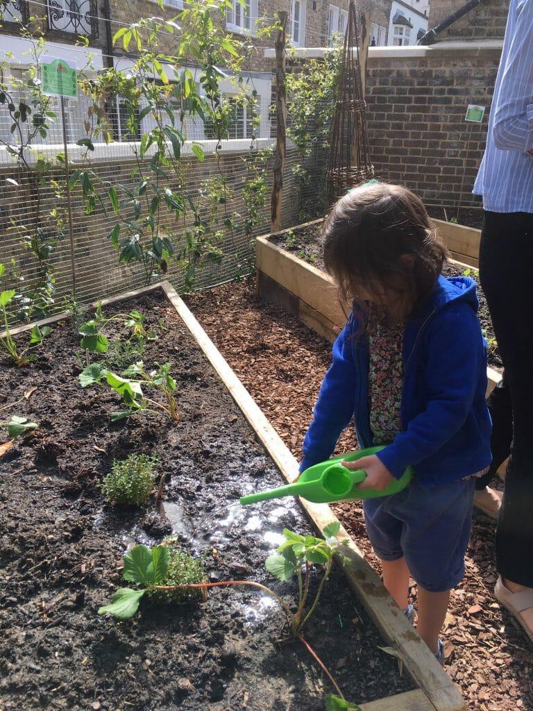 Gardening Christ Church Edible Garden watering charity flowers florist healthy eating