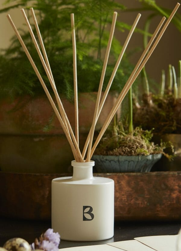 Photo showing a sample of a Bramley diffuser available to but with flowers from Kensington Flowers London as a gift set